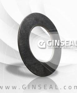 tangee graphite gasket