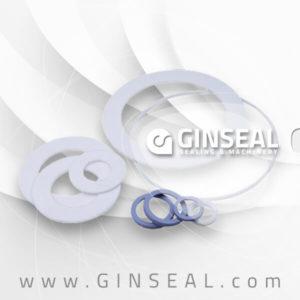 ginseal PTFE GASKET